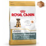 royal-canin-german-shepherd-junior-12kg.jpeg