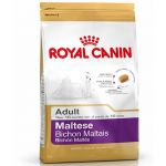 royal-canin-maltese-adult-500g.jpg